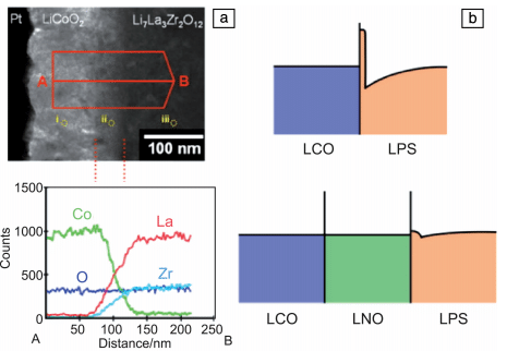 Figure 1 TEM photograph of LLZO/LCO interface (top) and linear EDS spectrum (bottom) (a); LCO/LPS interface (top) and LCO/LNO/LPS interface (bottom) calculated by DFT in steady state lithium Schematic diagram of ion concentration distribution (b)