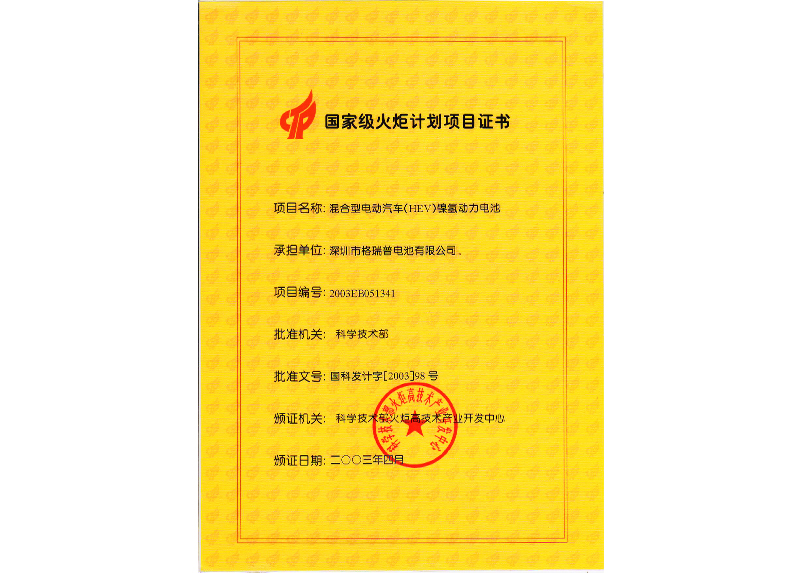 China Torch Program Project Certificate
