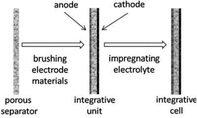 Schematic diagram of integrative cell preparation