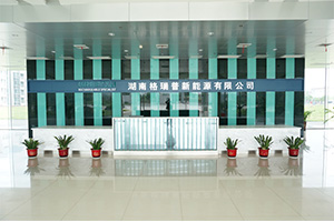 founded German branch office founded and Hunan factory
