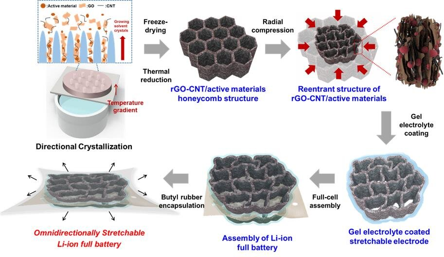 Schematic diagram of stretchable battery manufacturing process Credit: Korea Institute of Science and Technology (KIST)